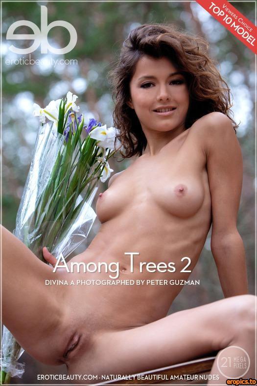 EroticBeauty Divina A - Among Trees 2 - 3744x5616px - x62 - Nov 08, 2013